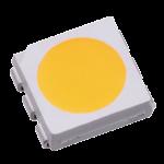DSC08804-MYS-5050WST-3JY1-ALTI-07